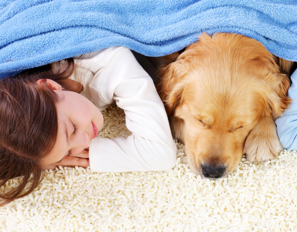 Dog and girl lying on clean white carpet