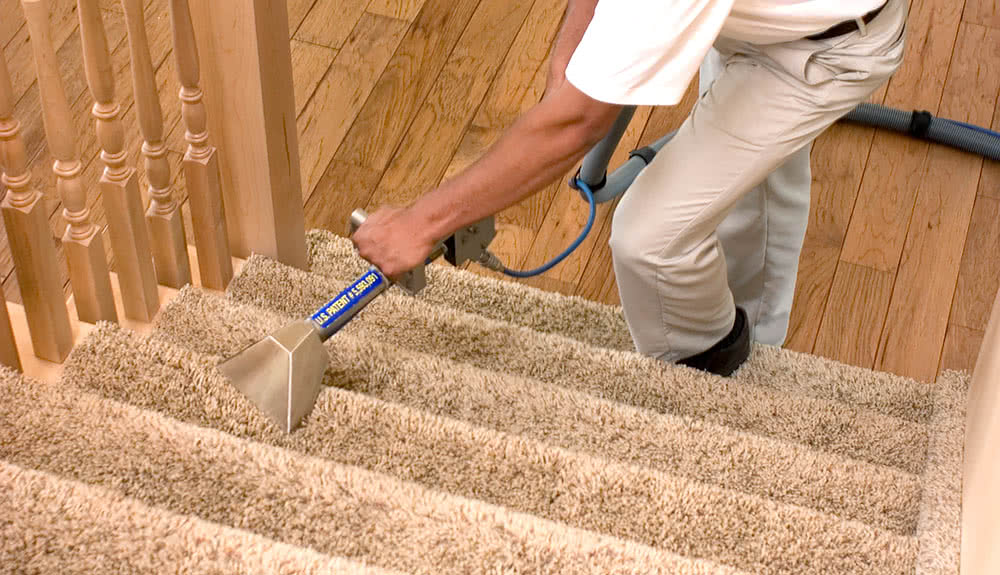 Carpet Cleaning Stairs in Auckland