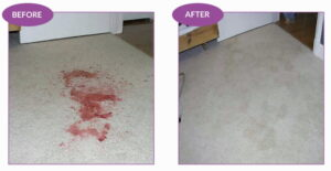 Carpet stain removal before and after
