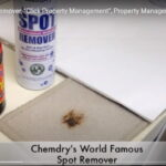 How to get Marmite stains out of carpets with ChemDry Stain Remover